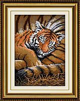 Вышивание камнями Dream Art Сладкий сон (тигренок) (полная зашивка, квадратные камни) (DA-30195) 23 х 32 см