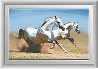 Алмазная вышивка Dream Art Пара скакунов (полная зашивка, квадратные камни) (DA-30224) 44 х 69 см