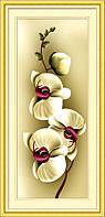 Алмазная мозаика Dream Art Нежность орхидеи 2 (полная зашивка, круглые камни) (DA-20004) 20 х 46 см