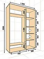 Шкаф-купе ШК 220х60x120 Алекса, фото 1