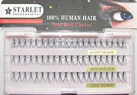 Пучки для наращивания ресниц (черные; длина 8,10,12  mm; 60 пучков) Starlet Professional