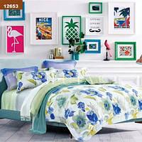 Комплект постельного белья Вилюта ранфорс двуспальный Евро 12653