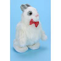 Зайчик - повторюха ( говорящий заяц ), 3 цвета
