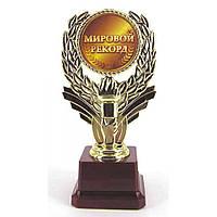 Кубок Мировой рекорд