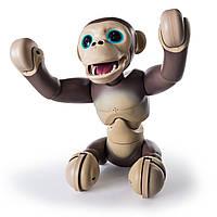 НОВИНКА!! Интерактивный шимпанзе Spin Master Zoomer Chimp