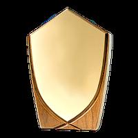 Награда щит сувенирный