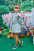 Костюм для девочки реглан+юбка р.116-134 светло серый в мелкий горох