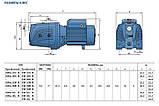 Pedrollo JSWm 3CL-N, 1100 Вт, 9,6 м3/ч, 42 м Насос, центробежный, , фото 3