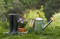 Подготовка дачного участка к весеннему сезону