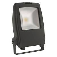 Kanlux Rindo LED MCOB-50-GM