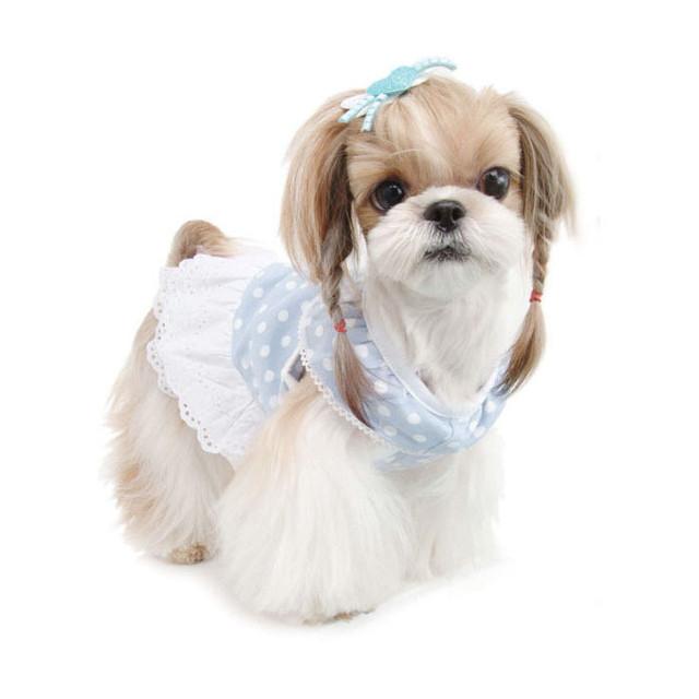 Одежда Puppy Angel