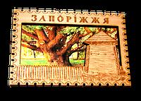 """Комбинированный магнит """"Запорожский 700-летний Дуб""""."""
