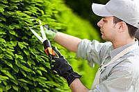 Послуги садівника