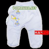 Ползунки (штаны) на широкой резинке р. 80-86 с начесом ткань ФУТЕР 100% хлопок ТМ Алекс 3180 Голубой 80 А