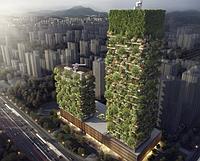 В Азии появится первый «вертикальный» лес из 3 000 растений