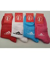 """Носки женские """"Adidas"""" в расцветке 12 шт"""