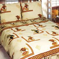 Комплект постельного белья Теп Этник 640