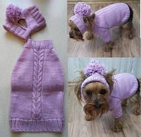 Свитер и шапка-снуд, Одежда для собак мелких пород