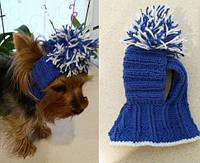 Шапка для собак Синяя