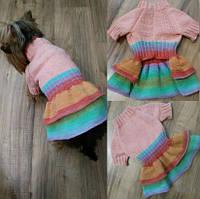 Платье 2092 для собак мелких пород
