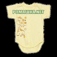 Детский боди-футболка р. 68 ткань КУЛИР 100% тонкий хлопок ТМ Алекс 3087 Желтый2