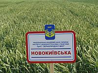 Новокиївська, І генерація