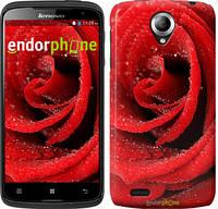 """Чехол на HTC Desire 620G Красная роза """"529c-187"""""""