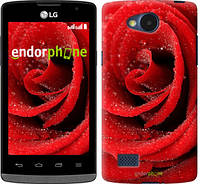 "Чехол на LG G Pro Lite D686 Красная роза ""529c-440"""