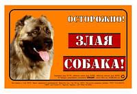 """Наклейка """"ОСТОРОЖНО, ЗЛАЯ СОБАКА"""" кавказская овчарка полноцвет"""
