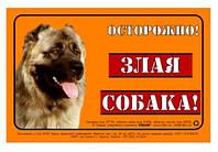 """Табличка """"ОСТОРОЖНО, ЗЛАЯ СОБАКА"""" кавказская овчарка полноцвет"""