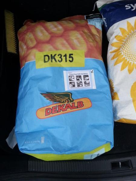 """Семена кукурузы Монсанто DK 315 (Monsanto) - """"Агро-Трейдинг Украина"""" - семена подсолнечника и кукурузы от производителя. в Харькове"""
