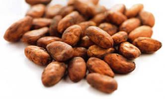 Какао бобы сырые 100 г