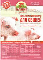 """8126 """"Хендрікс 30-110 """" (Trouw Nutrition, Україна) 5% Відгодівля"""