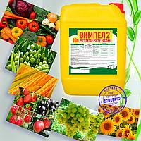 """Стимулятор роста растений """"Вымпел 2"""" повышает урожайность до 50%, защищает от болезней, морозов, засухи"""