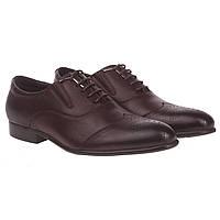 Туфли оксфорды мужские Cosottinni (коричневые, с перфорацией на носке, качественные, удобные)