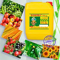 """Стимулятор роста растений """"Вымпел""""  повышает урожайность до 50%, защищает от болезней, морозов, засухи"""