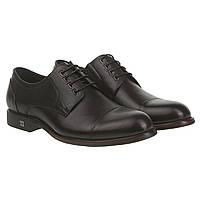 Туфли дерби мужские Cosottinni (черные, на шнурках, кожаные, стильные)