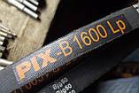 Приводной клиновой ремень B(Б)-1600 PIX, фото 3