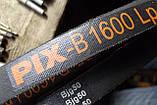 Приводной клиновой ремень B(Б)-1600 PIX, фото 4