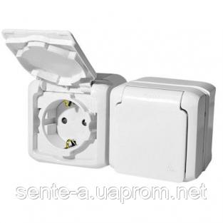 Вимикач 1-клавішний + розетка IP44 білий 782371 Legrand Forix (Quteo)