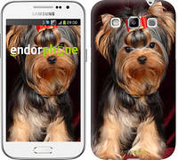 """Чехол на Samsung Galaxy Win i8552 Йоркширский терьер """"929c-51"""""""