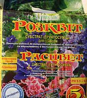 Расцвет, почвосмесь для сенполий, 5л., фото 1