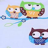 """Демисезонный конверт-одеяло для новорожденных """"Valleri """" (совенок), фото 3"""
