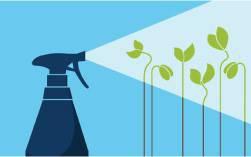 Засоби захисту рослин (ЗЗР): гербіциди, фунгіциди, інсектициди, пестициди