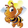 Мед Украины