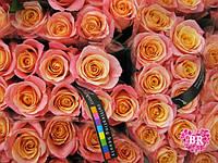 Купить цветы дешево Киев