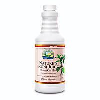 Сок Нони Моринды  Nature's Noni Juice  - обладает иммуномодулирующим и противовоспалительным свойствами