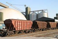 Услуги перевалки, хранения, очистки и сушки сои и кукурузи в Миргороде.