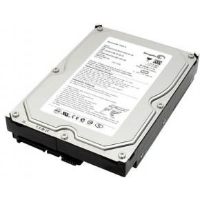 Жесткий диск (HDD) Seagate 250Gb (ST3250312CS)