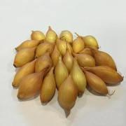 Семена лука Купидо (длинный) 1 кг.(лучшая цена купить оптом и в розницу)
